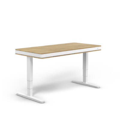 moll T7 XL exclusive íróasztal-tölgy-fehér