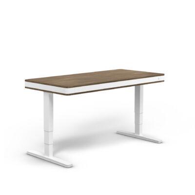 moll T7 XL exclusive íróasztal-dio-fehér