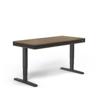 moll T7 XL exclusive íróasztal-dió-fekete