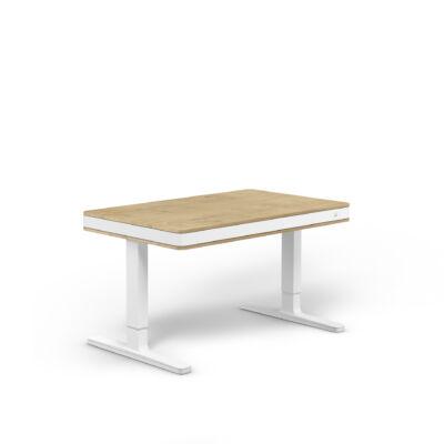 moll T7 exclusive íróasztal-tölgy-fehér