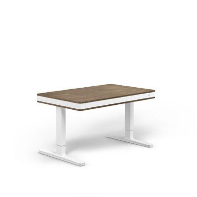 moll T7 exclusive íróasztal-dió-fehér