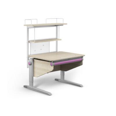 Flex Deck, Winner Compact juhar-fehér